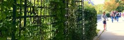 Balades Paris vert