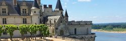 Königsschloss von Amboise