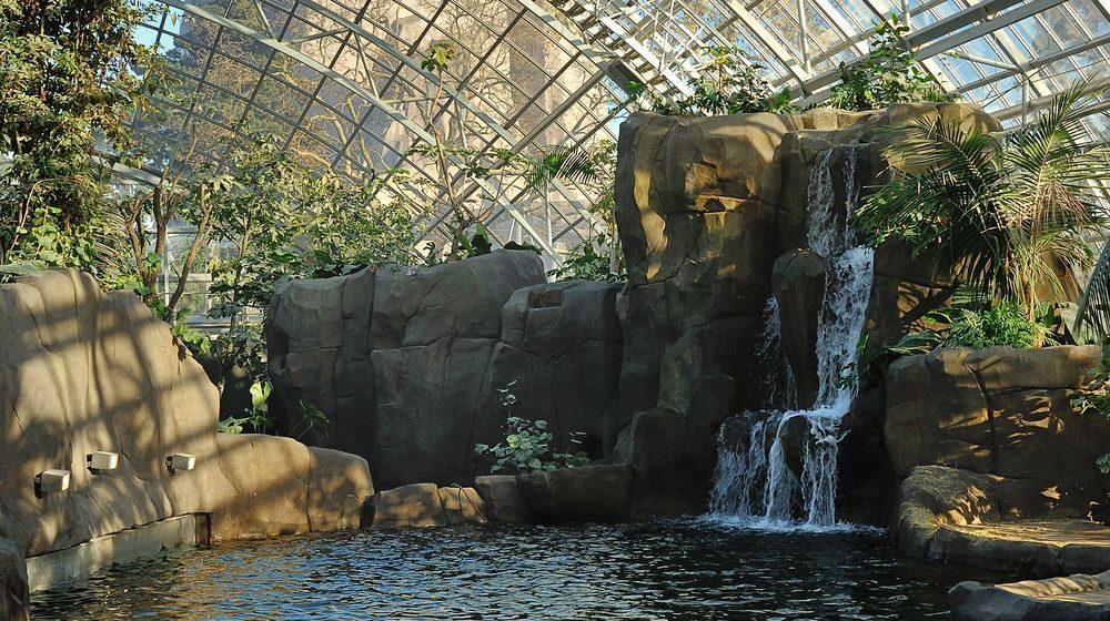 Parc Zoologique de Paris - Zoo de Vincennes © F-G Grandin MNHN